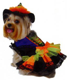 costumes-chien-halloween-2