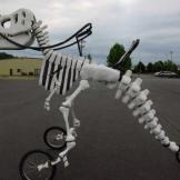 vélo dinosaure t-rex (3)