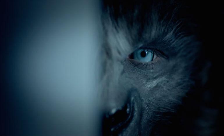 Cayden Wolf Wolves