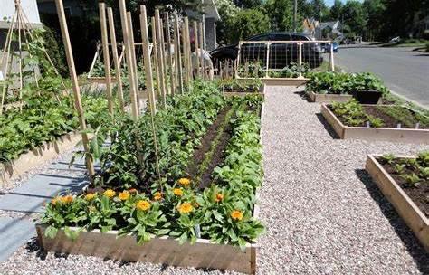 Jardin : 7 objets connectés pour vos plantes