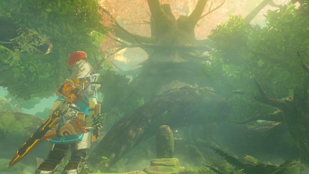 The Legend of Zelda Breath of the Wild Deku Tree