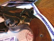 Mals Pistol14
