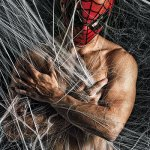 Spiderman - Philip Bonneau