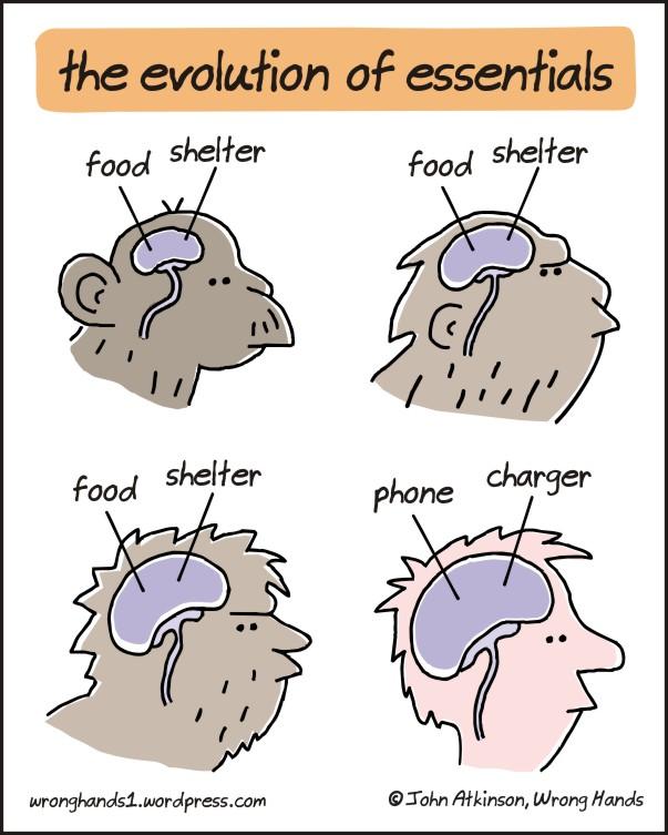 the-evolution-of-essentials
