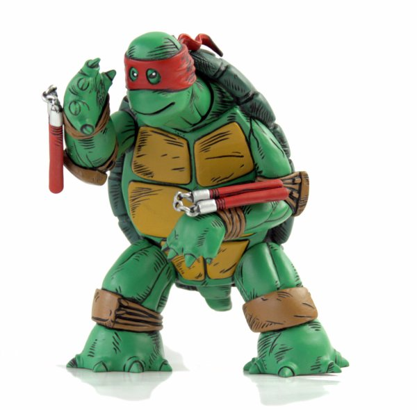 turtle2a