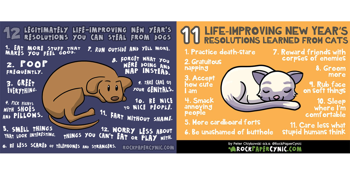 Life-Improving New Years Resolutions from Cats and Dogs