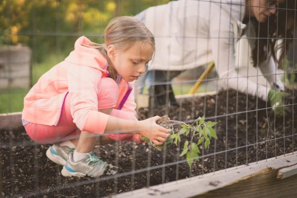 Can gardening help your child understand maths?