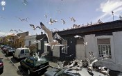 funny-google-street-view-photos-6