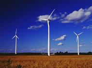 Wind turbines are green