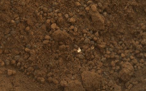 NASA Curiosity sample with bright, shiny fleck