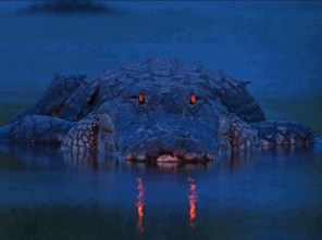 Gator with glowing read eyes