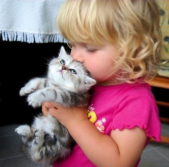 Child kissing kitten
