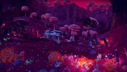 NMS #5