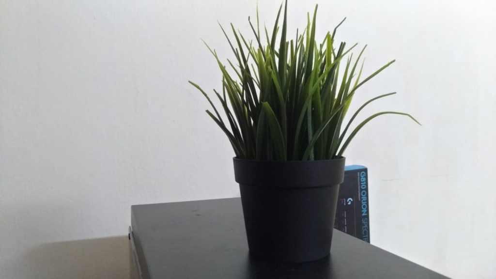 Asus Zenfone 4 Selfie Pro Indoor Shot 2 - GeeksULTD