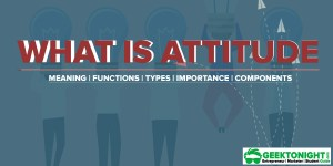 What is Attitude? Meaning, Functions, Types, Importance, Components