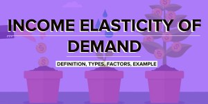 Income Elasticity of Demand | Definition, Types, Factors, Example