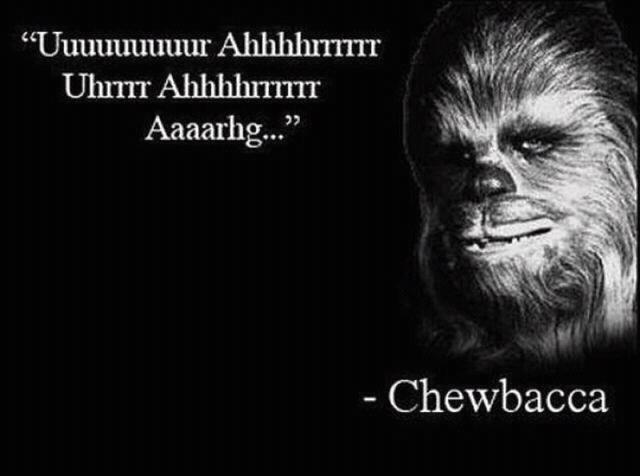 The Brilliance of Chewbacca