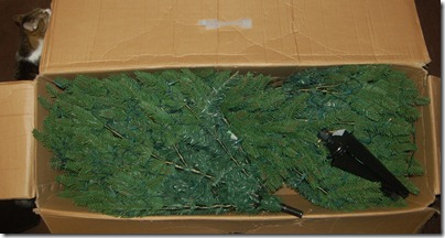 Unboxing a Christmas Tree 2009-11-27 009