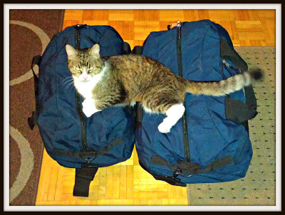 POD: I think she wants to come