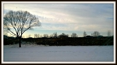 POD: Winter Landscape