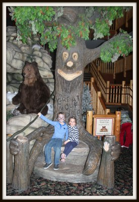 POD: Great Wolf Lodge