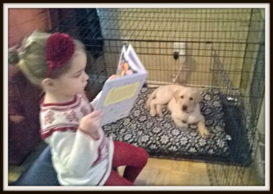 POD: Reading to Ruby