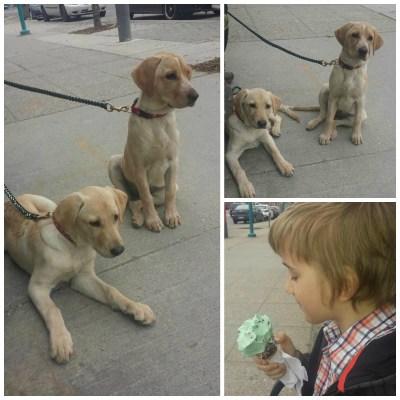POD: Ice Cream Break
