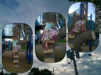 POD: Climbing Violet