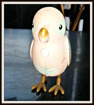 POD: Violets Love Bird