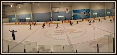 POD: Hockey Action