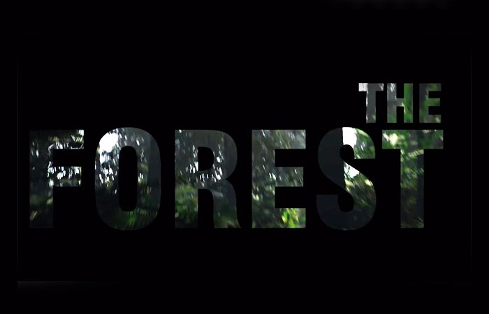 The Forest Open World Survival Horror Game For Oculus Rift And PC Video