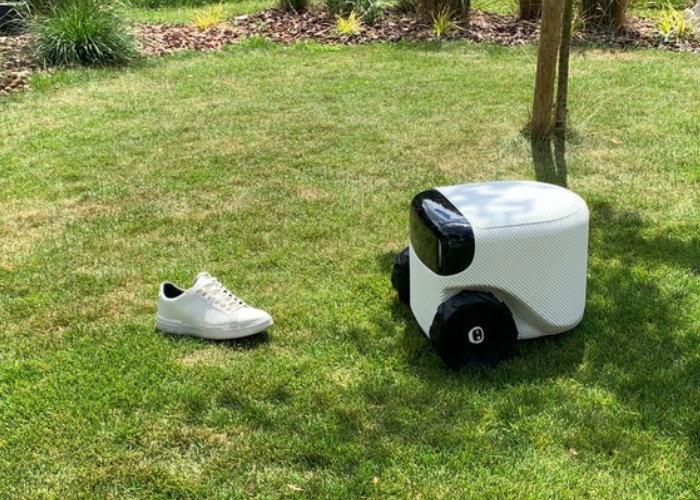 Toadie robot lawnmower