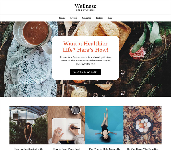 Wellness Pro Genesis Child Theme