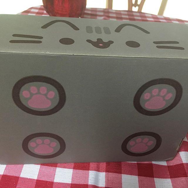 Pusheen Box – Spring Pusheen Box – Box Opening – Review