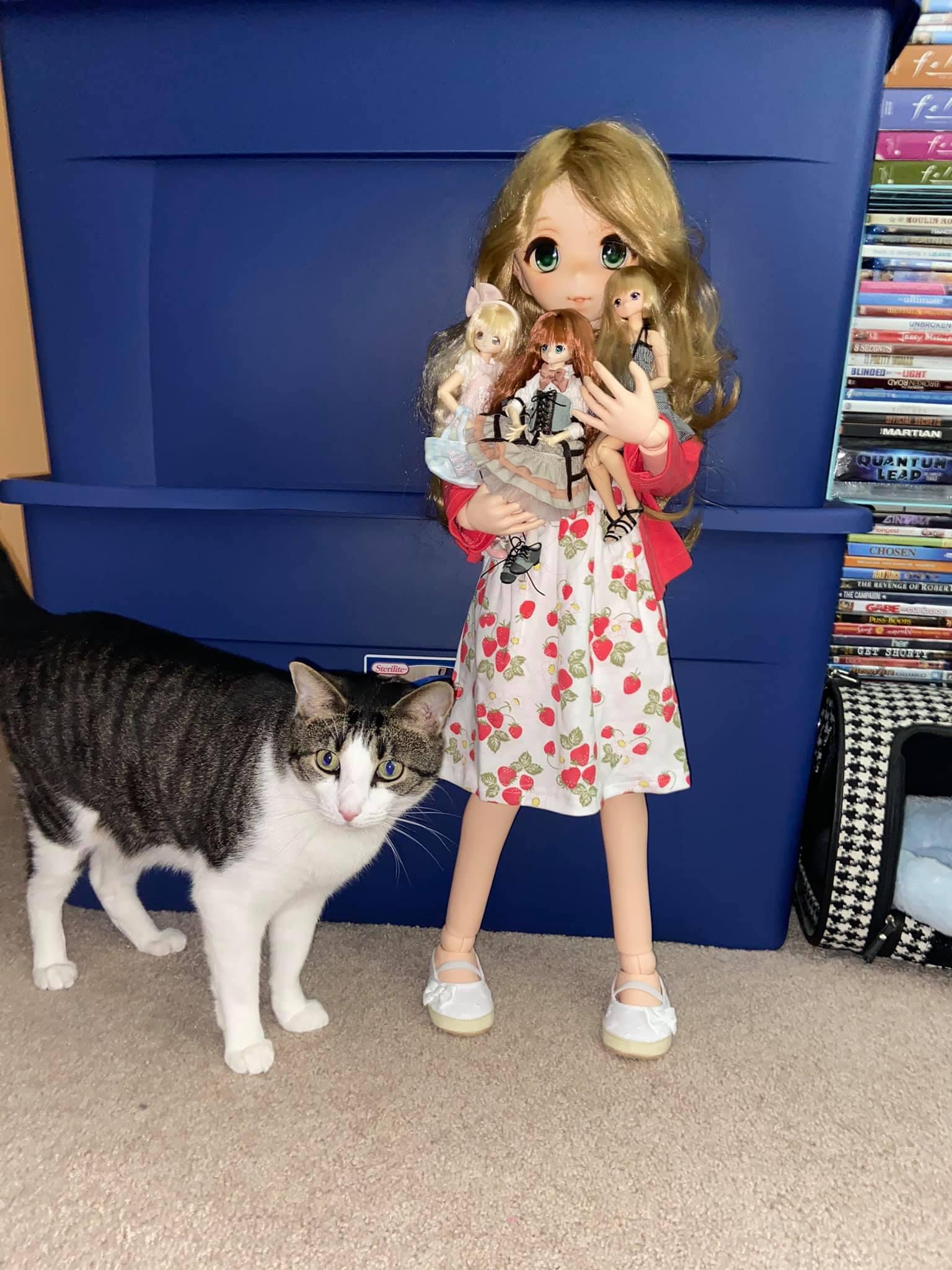 Parabox Otohime 80cm Vinyl ABJD Anime Doll Unboxing Review