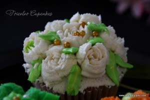 Tricolor Cupcakes_33