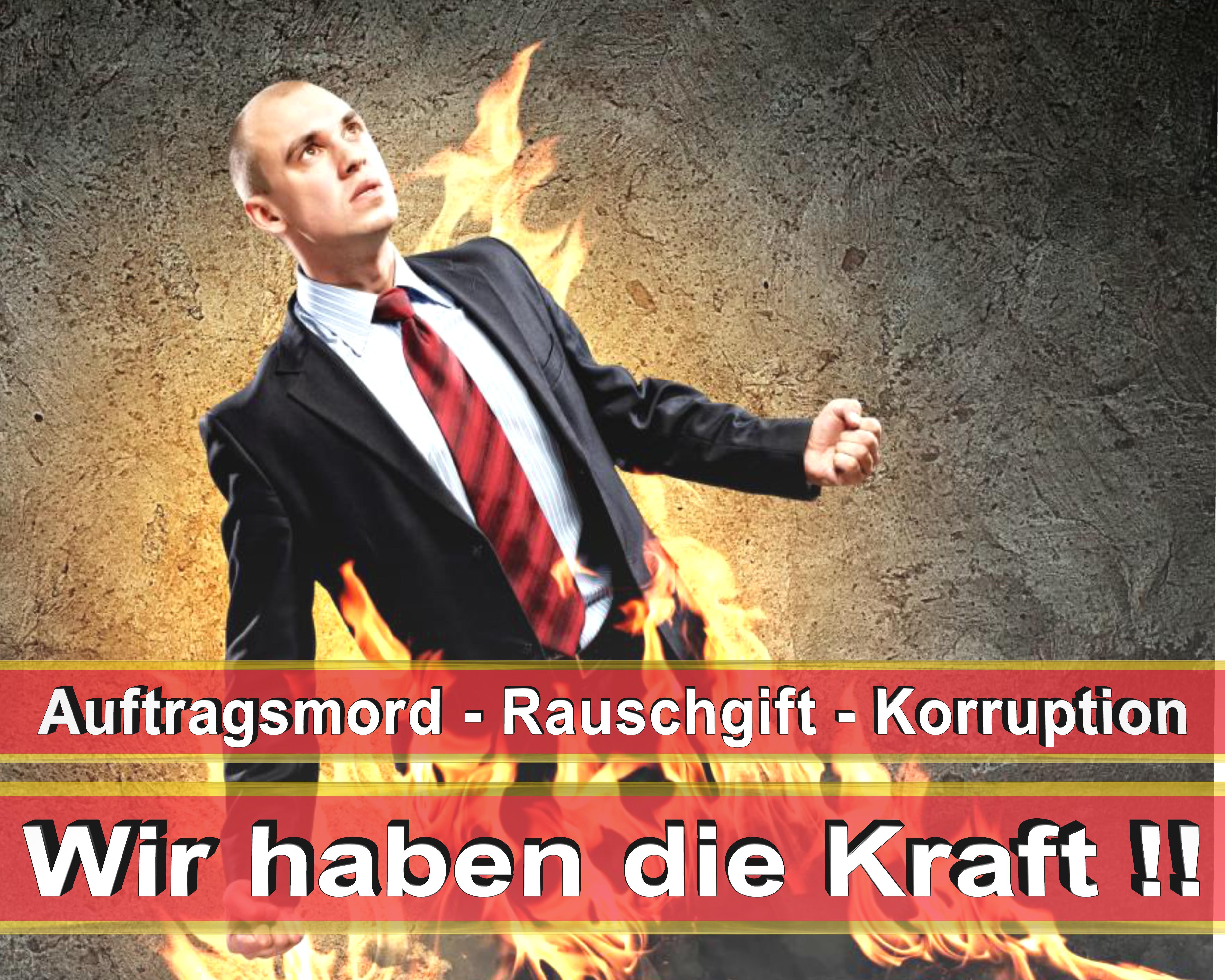 Bundestagswahl 2017 Wahlplakate CDU SPD FDP AFD NPD Angela Merkel Frauke Petry (7)