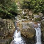 「山を買おう!」Part-2 「どこでもアート」〜自然の中で生きる力は育もうプロジェクト