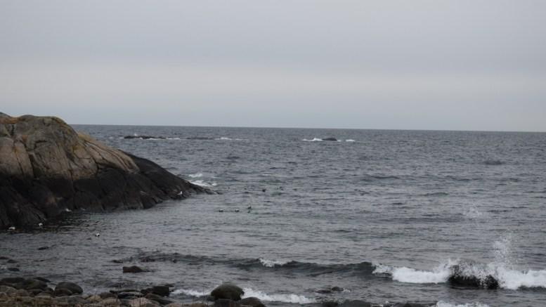 SAVNET FISKER: Spornesskjæra tirsdag morgen, der en sjark grunnstøtte mandag. Fiskeren som var i båten er savnet, og antatt omkommet. Foto: Esben Holm Eskelund