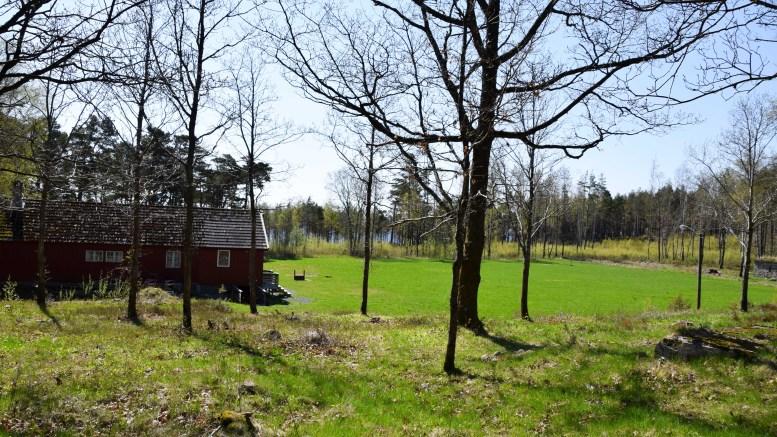 NASJONALPARKSENTER: Reguleringsplanforslaget på Hove gir plass til et nasjonalparksenter for Raet Nasjonalpark helt opptil rullesteinene, i området hvor Arendal Schæferhundeklubb disponerer areal. Foto: Esben Holm Eskelund
