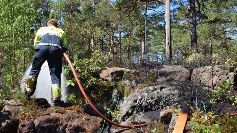 SKOGBRANN: Det tok fyr i skogen like ved en hytte mellom Hastensund og Øyna søndag formiddag. Foto: Esben Holm Eskelund