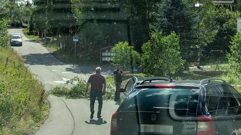 TREVELT: Et tre sørget for å sperre veien på Fabakkheia for en kort periode fredag. Foto: Bea L. Åsgård