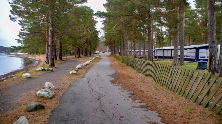 TILBAKE TIL NATUREN: Svært mange har gitt innspill om Hoveodden i forbindelse med arbeidet med kommuneplanens arealdel. Arkivfoto