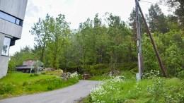 TIL BOLIGFORMÅL: Arealet i bakkant av strømstolpen på bildet er godkjent fradelt fra LNF-område til boligformål. Foto: Esben Holm Eskelund