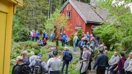 SOKKEMYR: Stedet ligger dypt inne i skogen øst på Tromøy. Arkivfoto