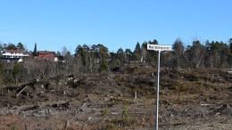 VIDEREUTVIKLING: Rådmannen i Arendal ønsker å investere ytterligere i utvikling av boligområdet på Marisberg de neste fire årene. Arkivfoto