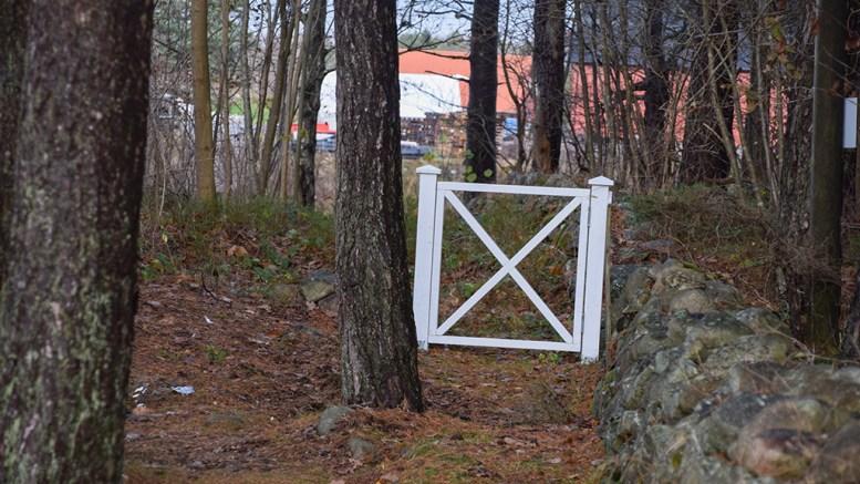 STENGER TURSTI: Nasjonalparkforvalter Jenny Marie Gulbrandsen mener denne hvitmale porten stenger tursti som fører til Listranda på Tromøy. Foto: Esben Holm Eskelund