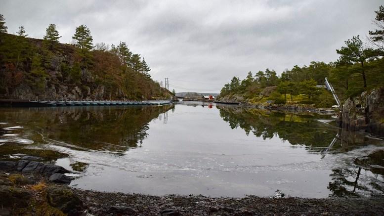 HØLEN: Vik som ligger øst på Tromøy. Foto: Esben Holm Eskelund