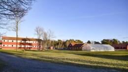 ÅPNER FOR RIVING: En ny fotballhall på Hove kan komme i konflikt med matjord. Sps Milly Grundesen åpner for å rive på Hove. Foto: Esben Holm Eskelund