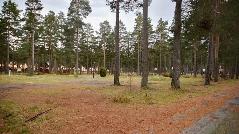 ARKEOLOGISK UNDERSØKELSE: Agder fylkeskommune planlegger start for undersøkelser av campingområdet på Hove etter sommeren. Arkivfoto